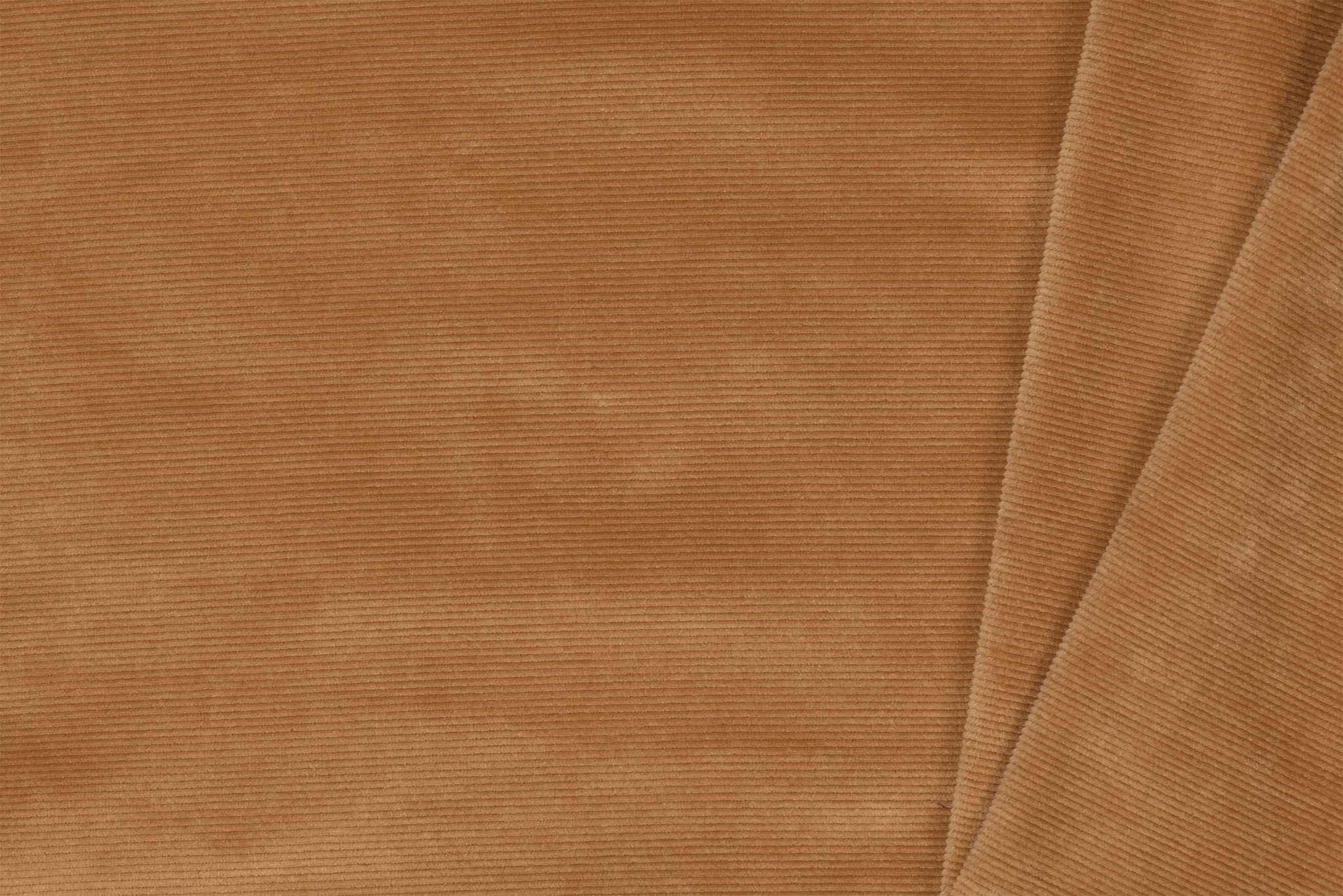 Small Corduroy Jersey Camel