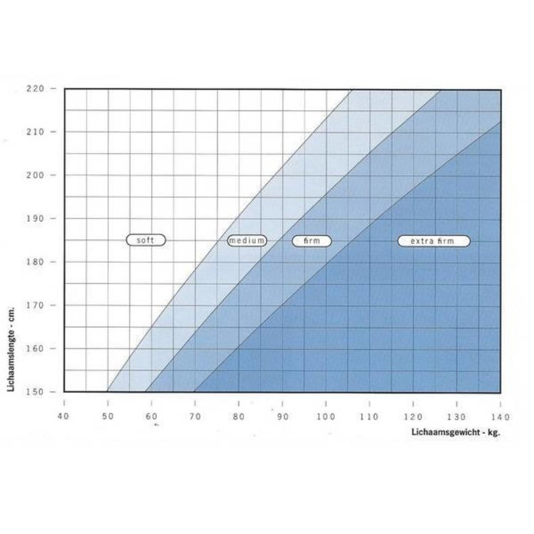 Auping Maestro Duo Core matras (180x200)
