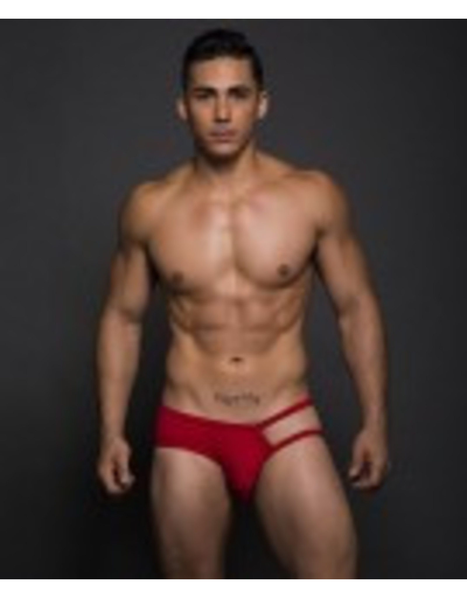 Andrew Christian Andrew Christian Fling Tagless Brief rot