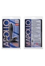 Apollo Prostata Plug schwarz