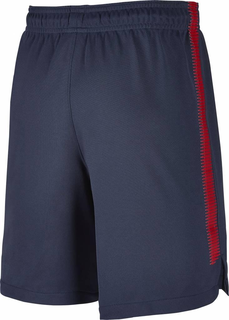 Nike Paris Saint Germain Dry Squad Short 17/18 Jr.