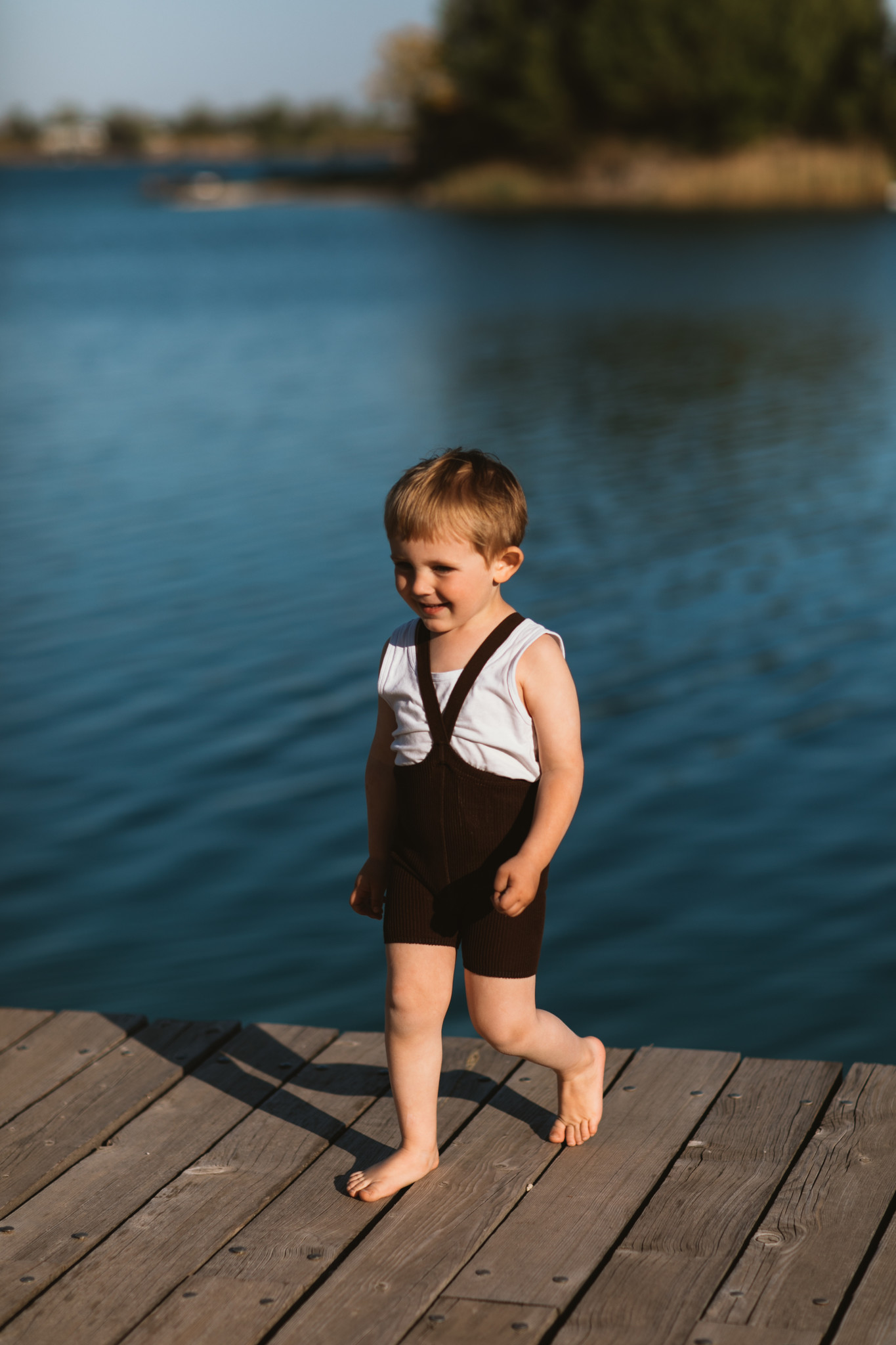 Silly Silas - shorty tights with braces - 100% cotton - chocolate brown - 0 to 3 years