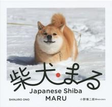 Media Factory - Japanese Shiba MARU