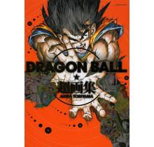 SHUEISHA - DRAGON BALL ART WORKS