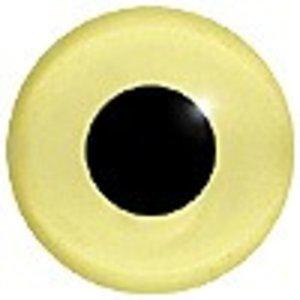 Goudfazant, haan (Chrysolophus pictus)