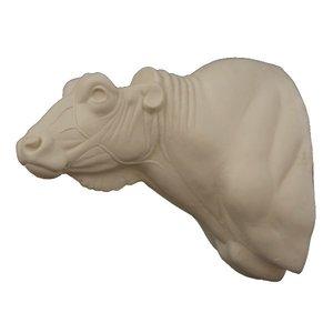 Kafferbuffel (Syncerus caffer)