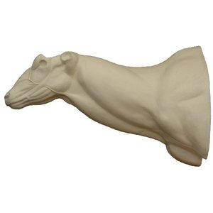 Grote koedoe (Tragelaphus strepsiceros)