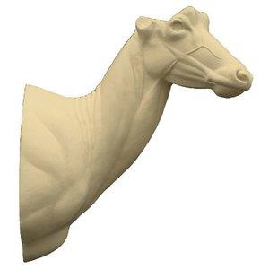 Roanantilope (Hippotragus equinus)