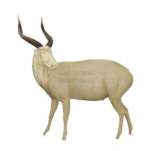 Bongo (Tragelaphus eurycerus)