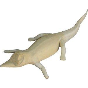 Alligator (Alligator ssp.)