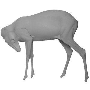 Reegeit (Capreolus capreolus)
