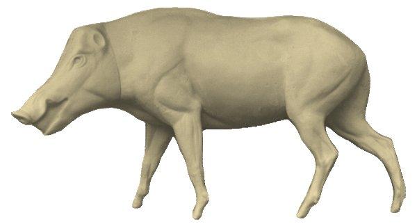 Hauser Wild boar life size - Prepareerwinkel nl