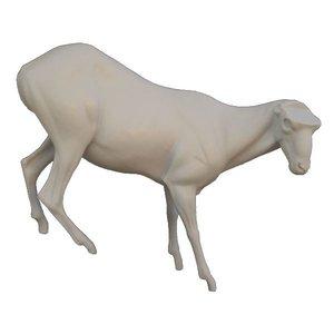 Steenbok - Life size 5