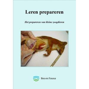 Het prepareren van kleine zoogdieren