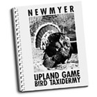 Upland Game Bird Taxidermy by Frank Newmyer
