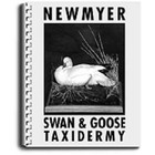 Swan and Goose Taxidermy by Frank Newmyer