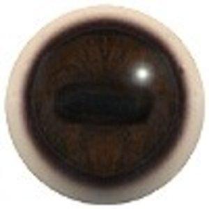 Muntjak (Muntiacus reevesi)