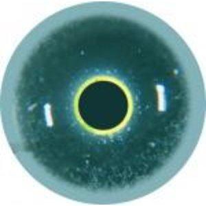 Aalscholver (Phalacrocorax carbo)