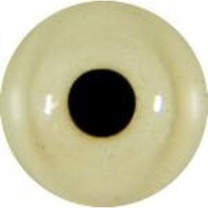 Dunbekmeeuw (Chroicocephalus genei / Larus genei)