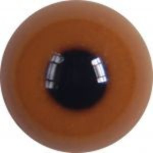Middelste zaagbek (Mergus serrator - juveniel)