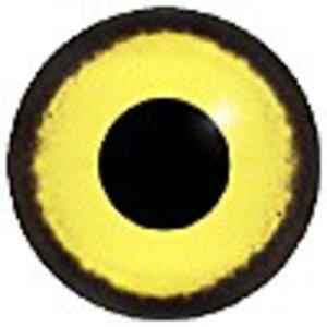 Ralreiger (Ardeola ralloides)
