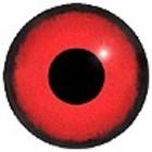 Roodkeelduiker