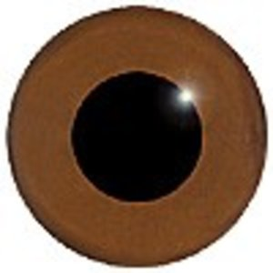 Baardgrasmus (Sylvia cantillans)