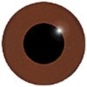 Kwartelkoning, juveniel (Crex crex)