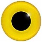 Sperwergrasmus