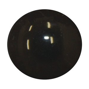 Merel (Turdus merula)