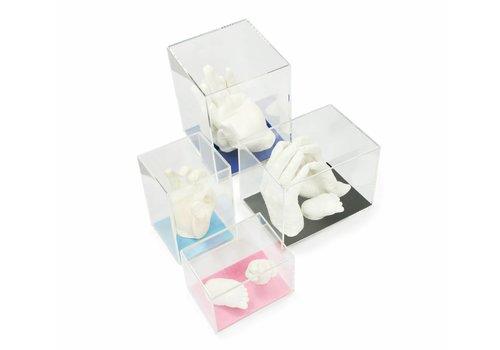 Lucky Hands® Acrylglas vitrines
