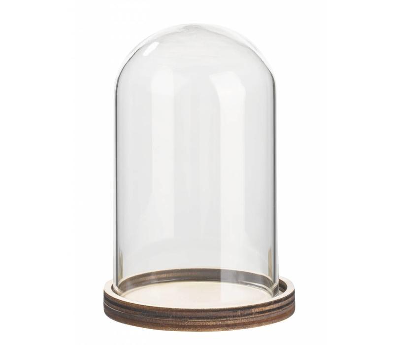 Campana de vidrio con estante de madera