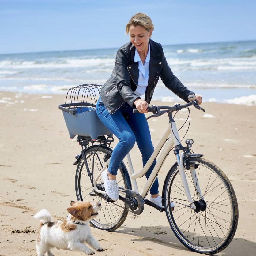 fietsen met uw hond