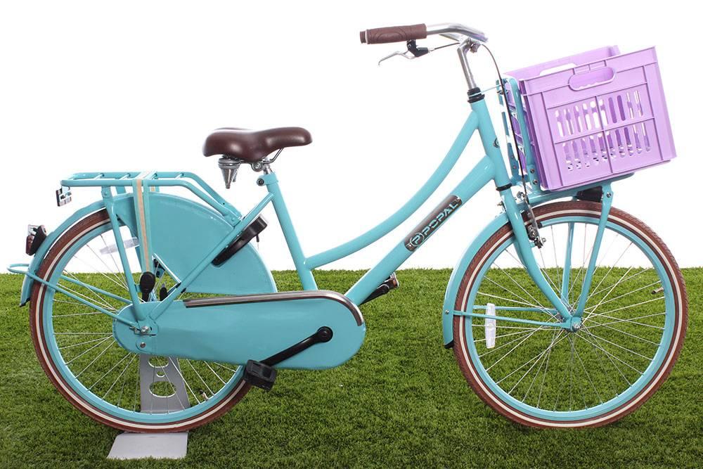 Kinderkrat voorop de fiets