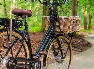 E-bike verkoop neemt toe (fietsaccu's en andere e-bike accessoires eveneens)