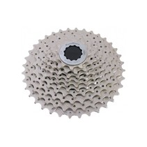 Cassette CSMS1 with steel spider 10-sp 11-36 Champagne
