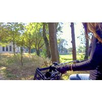 Unisex Handschuhe Modell Urban (2 Paare)