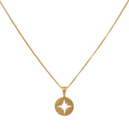 Eline Rosina North Star Coin (Silver/Gold)