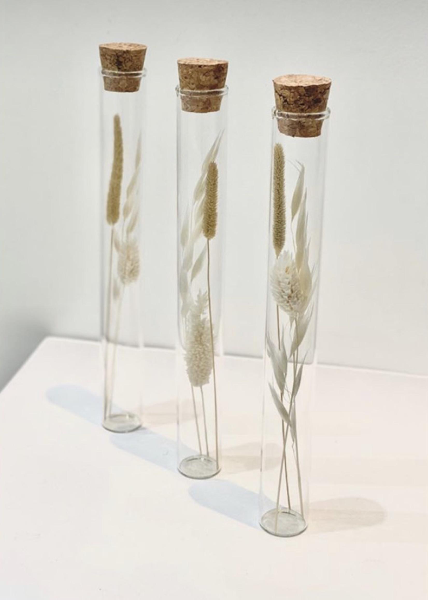 Dry flower jars / set of 3