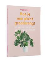 Hoe je een plant groot brengt