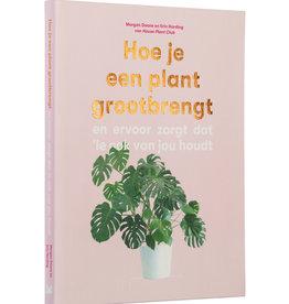 BIS Hoe je een plant groot brengt
