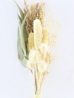Dry flower bouquet babala physalis