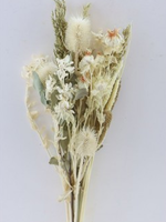 Dry flowers bouquet carthamus thistle bleached