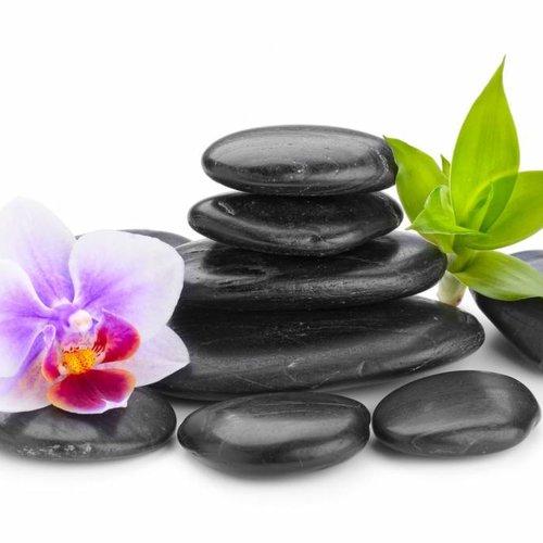 Wellness thee en  Ayurveda