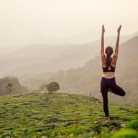 Yoga en Ayurveda