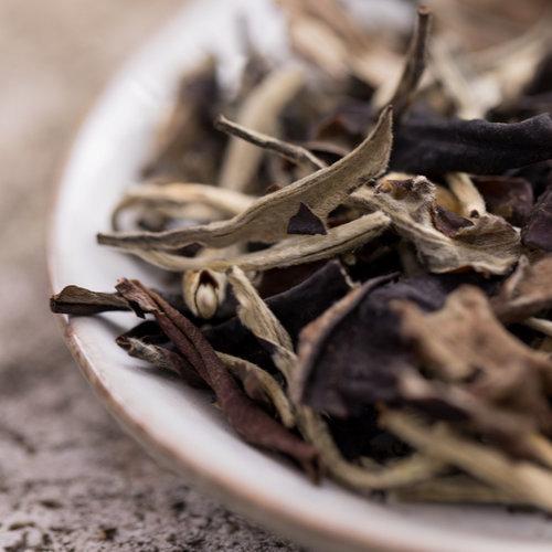 Bai Mu dan White Peony Superior Biologisch | losse thee kopen