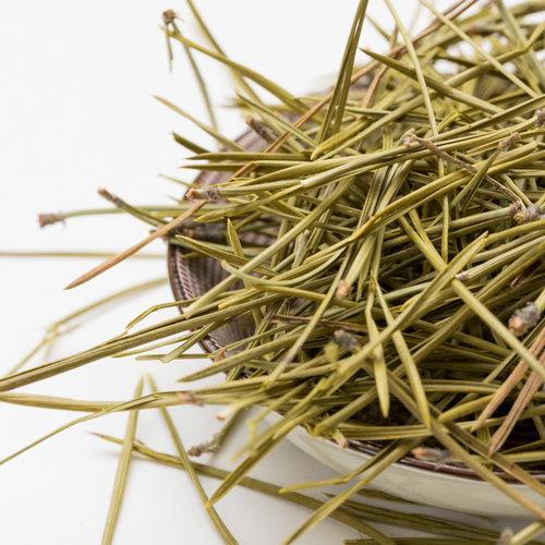 Dennennaalden om kruidenthee mee te zetten - Pinus sylvestris