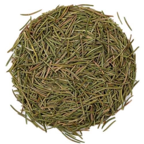 Dennennaalden om kruidenthee mee te zetten - Picea abies