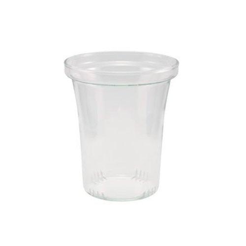 Trendglas Jena Glazen theepot Soma van hittebestendig borosilicaatglas