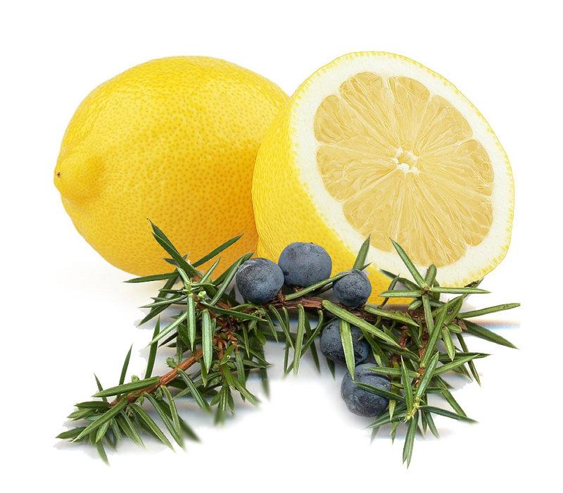 Lippenbalsem 15g Lemon & Juniper